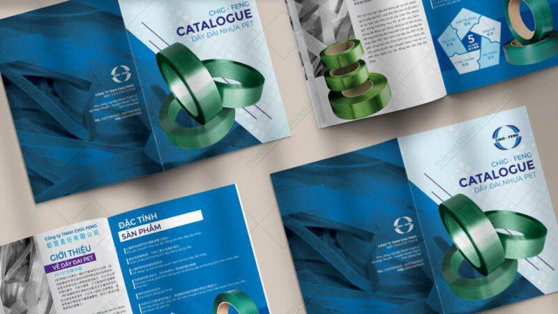 Thiết kế catalogue đẹp - tạo ấn tượng tốt cho khách hàng